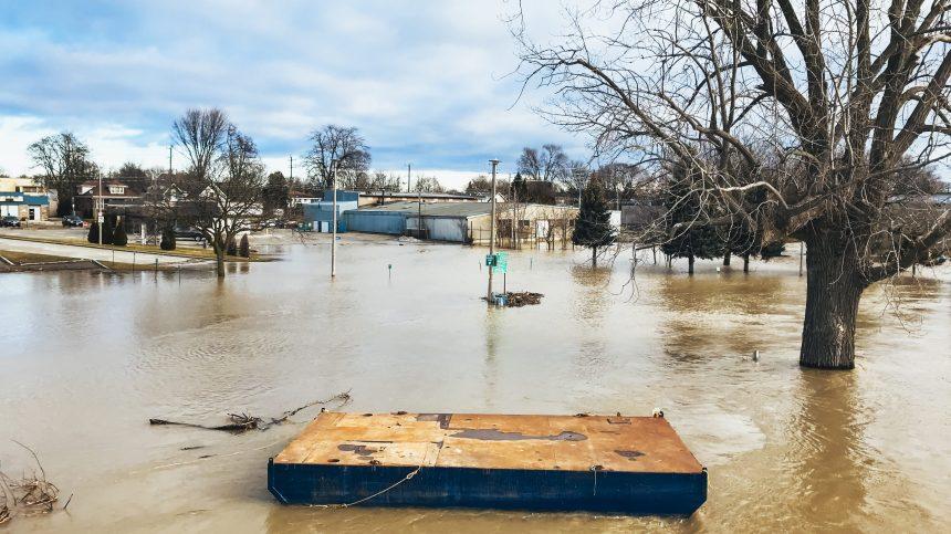 Les agences de la protection de la nature subissent des coupes en Ontario