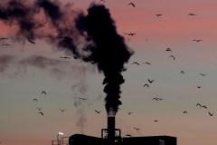 Les enfants seraient plus vulnérables aux effets des changements climatiques