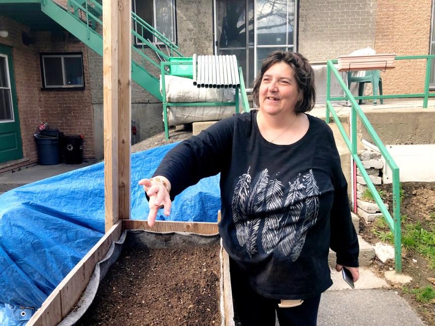 Projet Harmonie : quand l'agriculture urbaine transforme un HLM