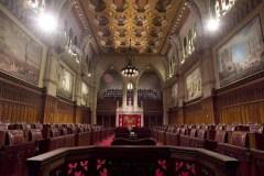 Le Sénat approuve de nombreux projets de loi en fin de séance