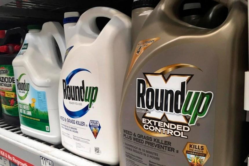 Roundup de Monsanto: une demande d'action collective québécoise