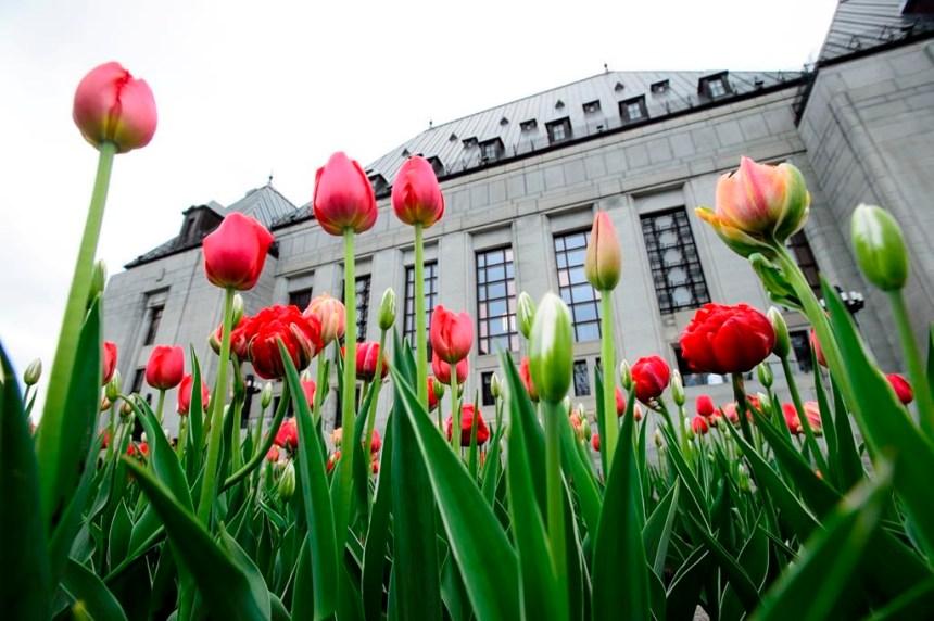 Mort de Cindy Gladue: la Cour suprême ordonne un nouveau procès