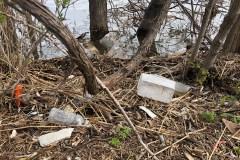 Pointe de l'île: des rives jonchées de déchets