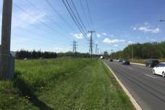 À quoi s'attendre du corridor de la biodiversité à Saint-Laurent?