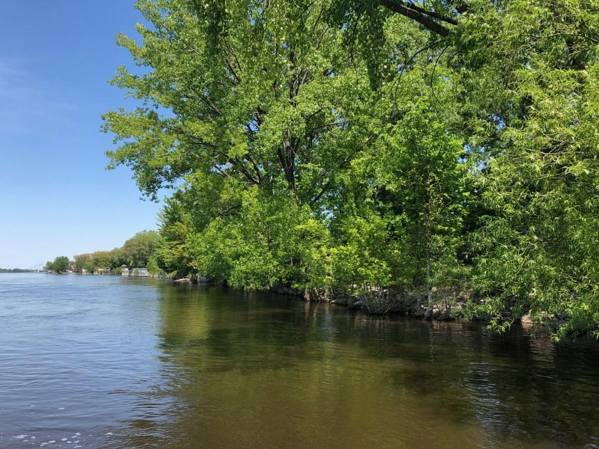 Détérioration de la qualité de l'eau dans l'est de Montréal