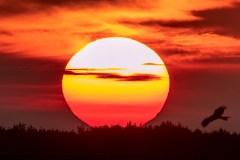 Le solstice d'été à 11h54, vendredi, sera suivi d'un été frais au Québec