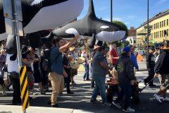 Des opposants à Trans Mountain participent à une longue marche à Victoria