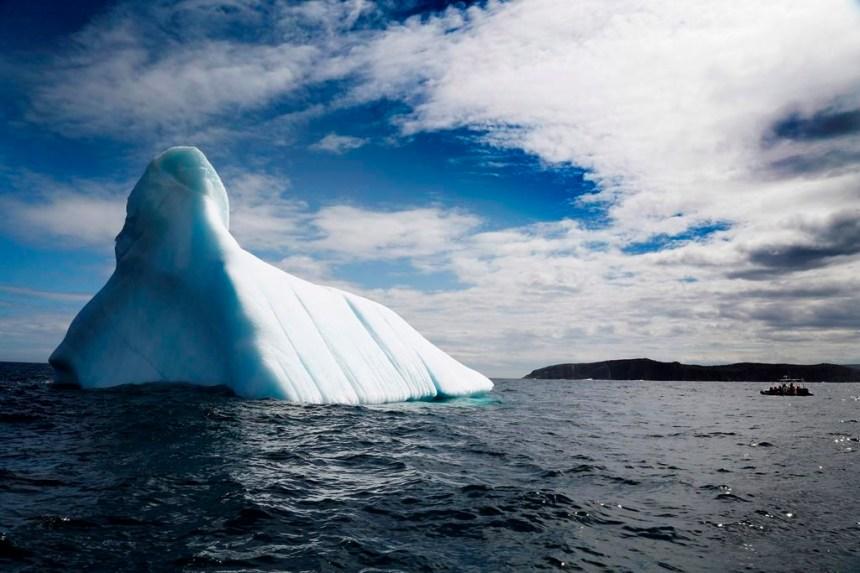 Les icebergs attirent un nombre croissant de touristes à Terre-Neuve