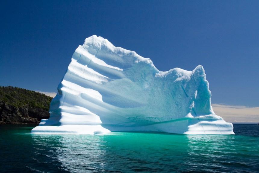 Observer les icebergs à Terre-Neuve