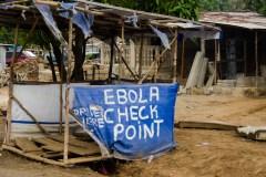 La moitié des foyers du virus Ebola ne serait pas détectée