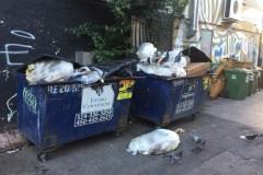 Encore des problèmes avec les poubelles sur Saint-André