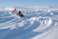 Vague de chaleur dans l'Arctique: il a fait plus chaud au Nunavut qu'à Victoria
