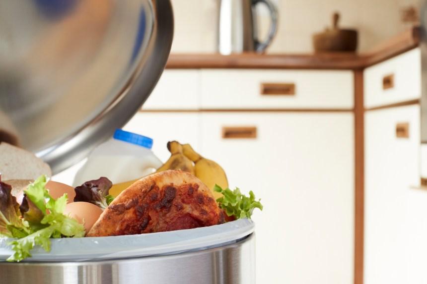 Les États-Unis sont le plus gros producteur de déchets ménagers des pays développés