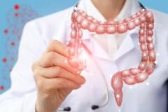 Des formes de la maladie de Parkinson pourraient naître dans l'intestin