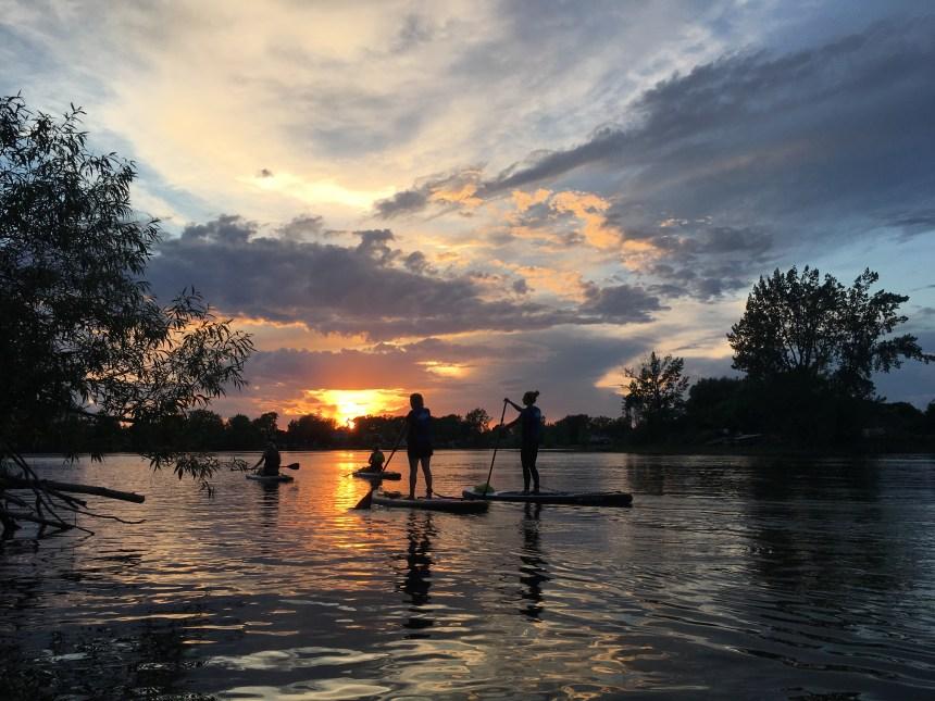Cours de planche à pagaie sur le fleuve