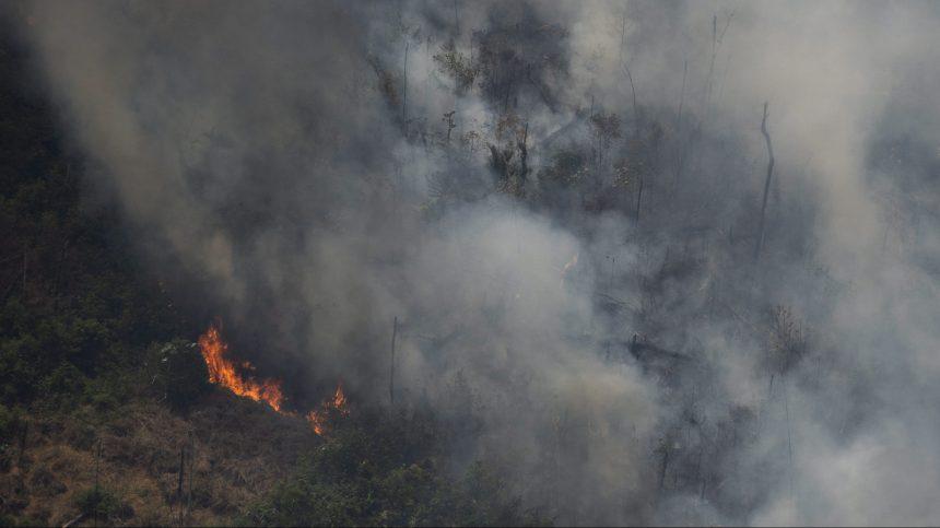Incendies en Amazonie: l'émotion grandit face aux centaines de nouveaux feux
