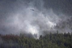 Les incendies transformeraient la forêt boréale en source de carbone