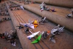 Former des ingénieurs à l'origami pour construire les bâtiments de demain