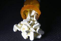 Ensemble Montréal demande que l'antidote aux opioïdes soit offert dans les bibliothèques municipales