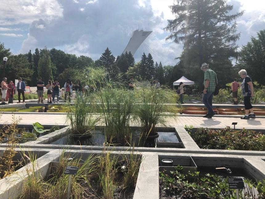 Découvrir le pouvoir caché des plantes au Jardin botanique