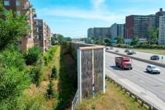 Projet-pilote au Québec: des saules pour traiter l'eau des sites d'enfouissement
