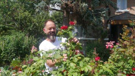 Réal Migneault, agriculteur urbain, ceuillant une rose.