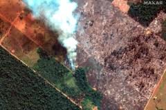 Le G7 devrait réduire ses propres GES pour aider l'Amazonie, selon Greenpeace