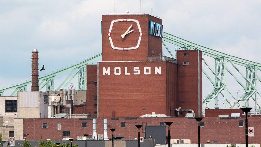 Molson: l'OCPM prévient la Ville de ne pas répéter les erreurs de Griffintown