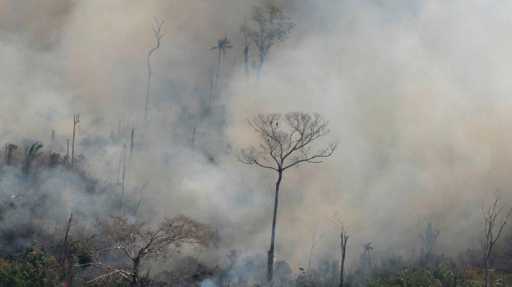 Un écran de fumée causé par les feux de forêt en Amazonie.