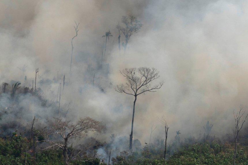 Amazonie: l'armée pour combattre les feux?