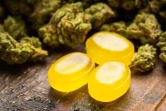 Cannabis: la Santé publique demande un meilleur encadrement des produits comestibles