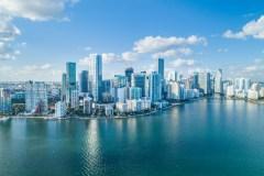 Avec ses «iguanacornes», Miami se rêve en nouvelle Silicon Valley