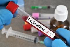 Douze nouveaux cas de la maladie du légionnaire ont été recensés au N.-B.