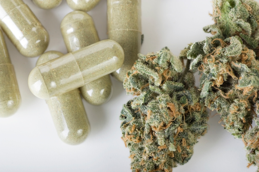 Une étude montre que la combinaison cannabis-opiacés est associée à des taux élevés d'anxiété