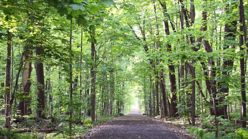 Parcs-nature : Sorties automnales à coup de balados