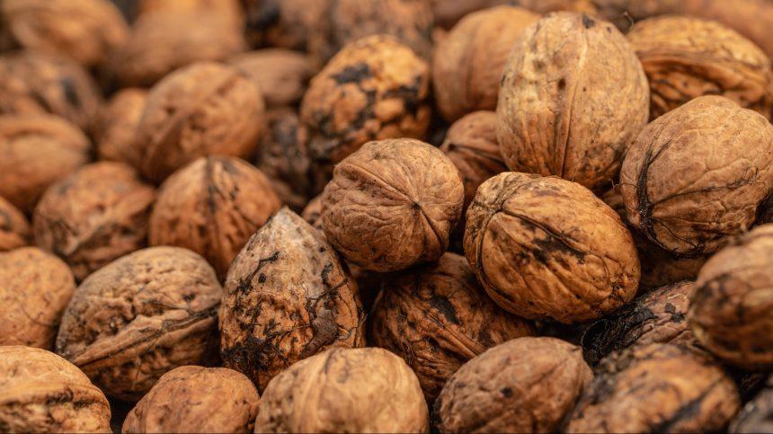 Manger des noix régulièrement réduirait les risques de décès par maladies cardiovasculaires