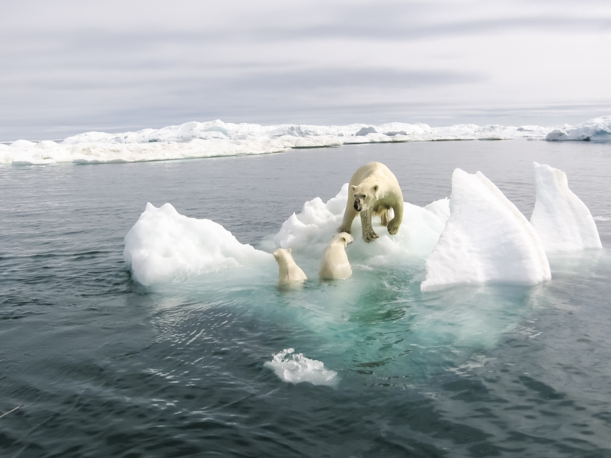 Les changements climatiques sont source d'«écoanxiété» chez les jeunes