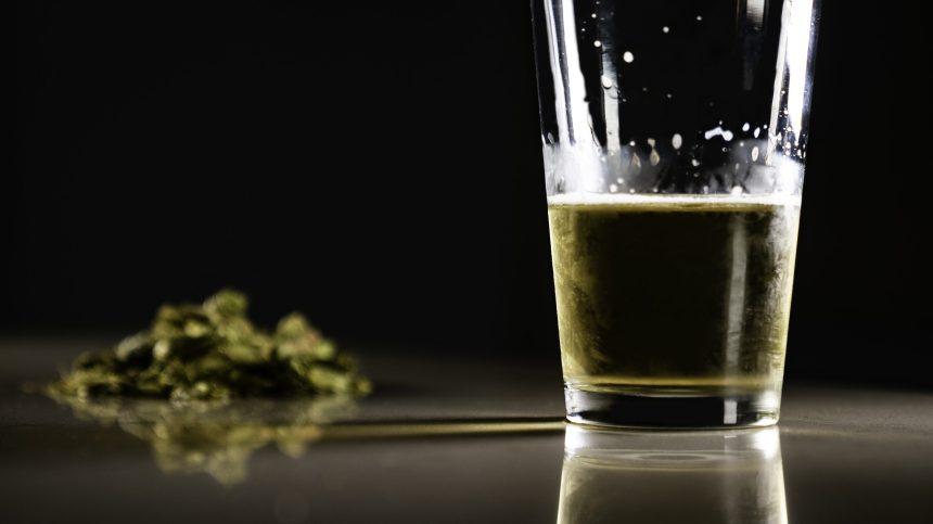 États-Unis: le premier café cannabis ouvre à Hollywood