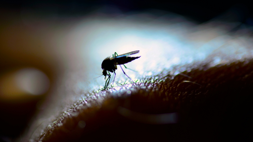 La Nasa veut lutter contre le paludisme depuis l'espace