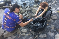 Un appel à tous pour nettoyer le bord de la berge de la Promenade Bellerive