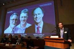 Des travaux sur l'oxygène récompensés par le Nobel de médecine