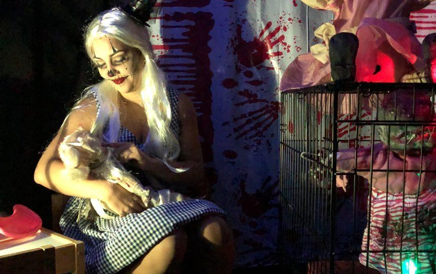 Halloween : des centaines de visiteurs attendus au «couloir de la terreur»