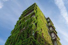 Le livre blanc pour une relance verte d'Écotech Québec