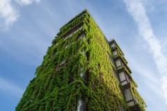 Architecture pour un bâtiment plus vert