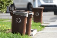 Encore plus de bacs bruns dans Rosemont-La Petite-Patrie
