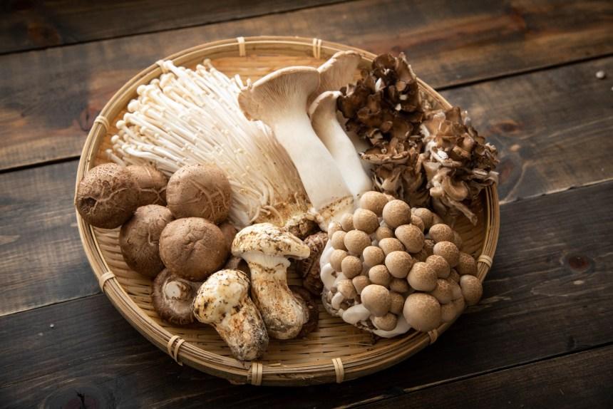 La consommation de champignons abaisserait le risque de cancer de la prostate