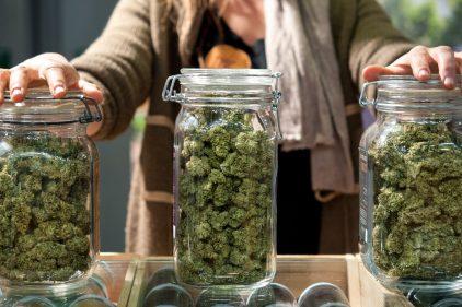 États-Unis: le cannabis thérapeutique réduirait la consommation d'opioïdes