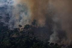 Amazonie: des ONG dénoncent l'emprisonnement «abusif» de pompiers