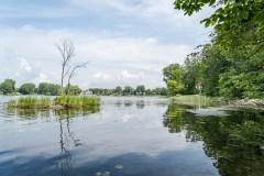Protection des milieux naturels: Québec «doit s'engager» à accélérer le rythme