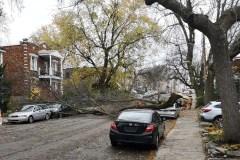 Les forts vents causent des dégâts à Ahuntsic-Cartierville